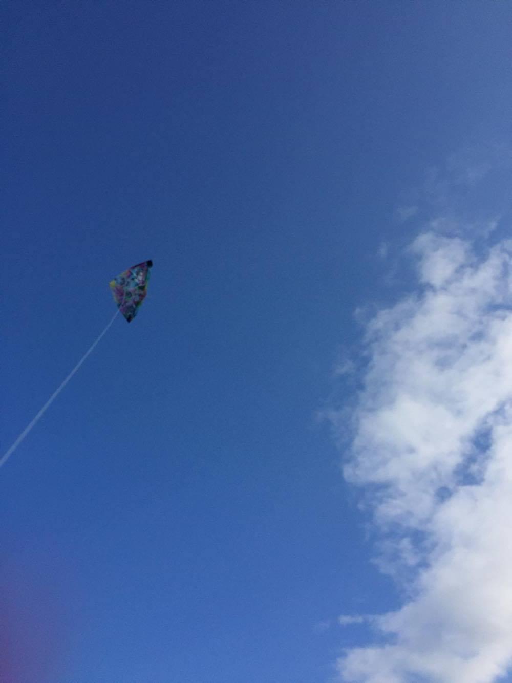 南知多の青い空と凧揚げ!