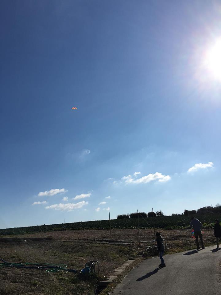 広い空で思う存分楽しめる凧揚げ! 山本奈緒様