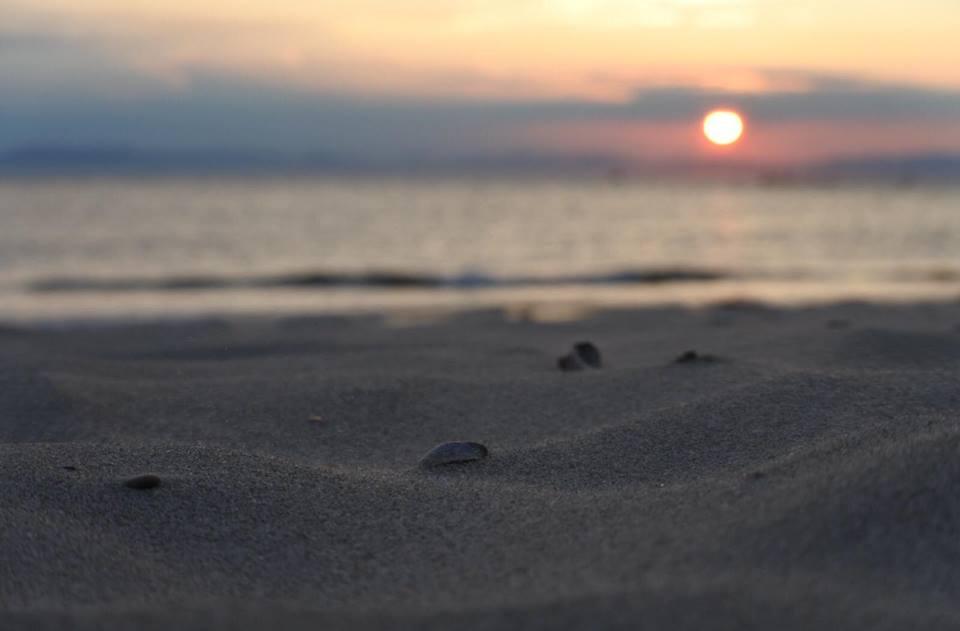 砂浜がキレイで思わず裸足に…