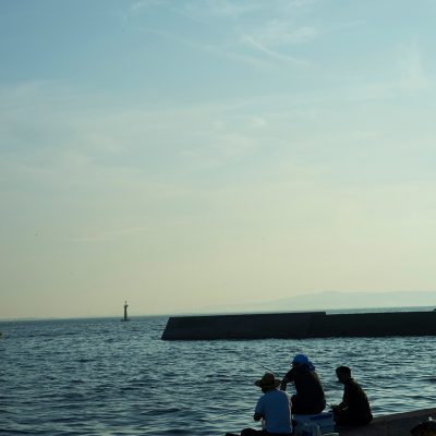 大井漁港で朝釣り