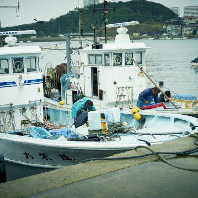 雨のとれとれ漁師市