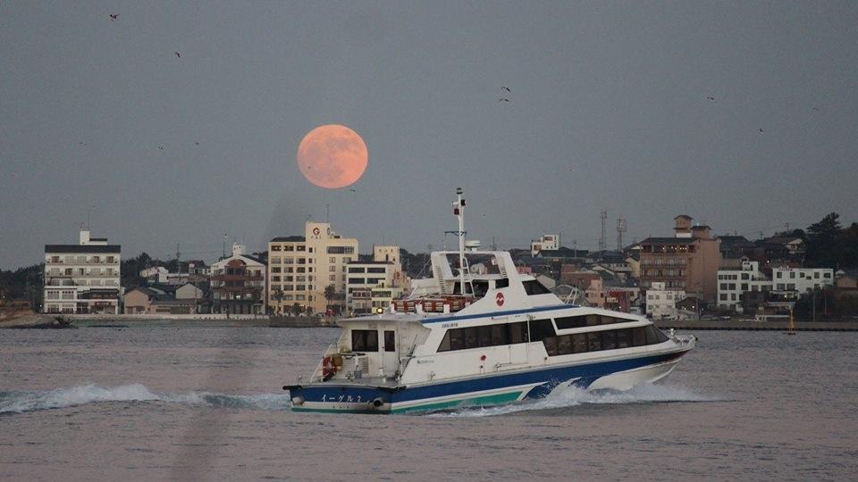 2017最大の満月を釣り上げ