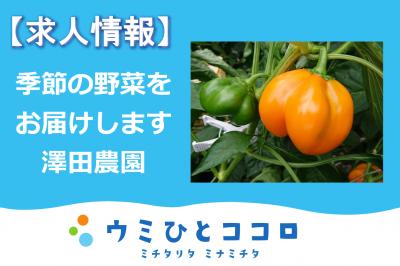 季節の野菜を育てよう ~澤田農園 求人募集~